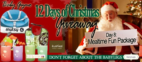 homead2701 Baby Gizmo 12 Days of Christmas Giveaway Day 8