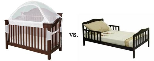 Crib Tent vs. Toddler Bed
