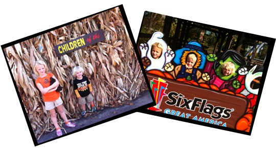 SixFlags corn Is Six Flags Fright Fest Kid Friendly or What Nightmares are Made of?