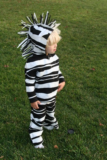 toddler boy in zebra costume