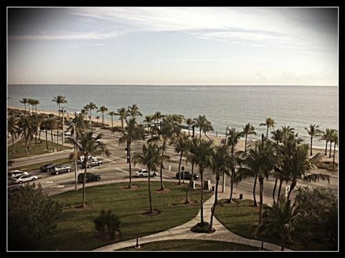 b ocean hotel view