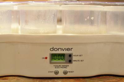 Homemade Plain Yogurt: Easier Than You Think!