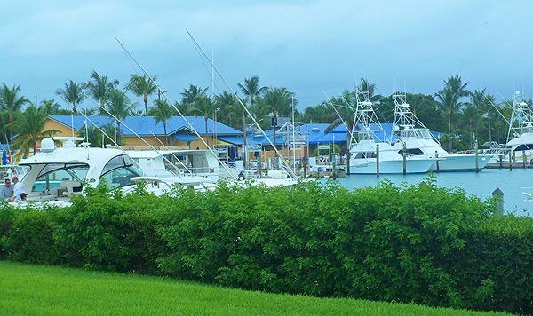 hawkscay marina Hawks Cay Resort Review
