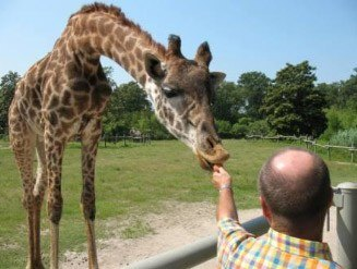 Feed the Giraffes at the Virginia Zoo in Norfolk