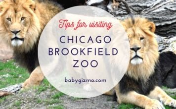 Chicago Brookfield Zoo Tips
