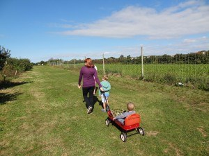 Yet more walking (this time in an apple orchard)