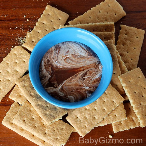 S'mores Dip surrounded by graham crackers
