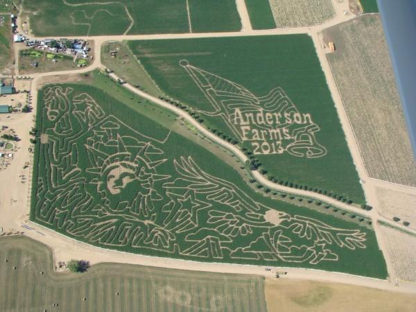 Andersom Farms corn maze