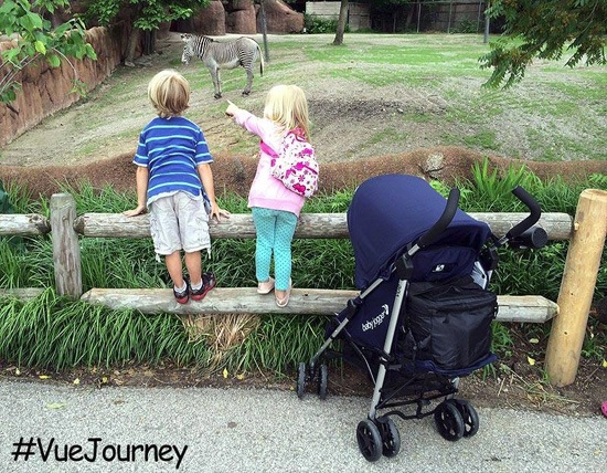 Vue Zoo The Amazing Journey with the Vue (GIVEAWAY)