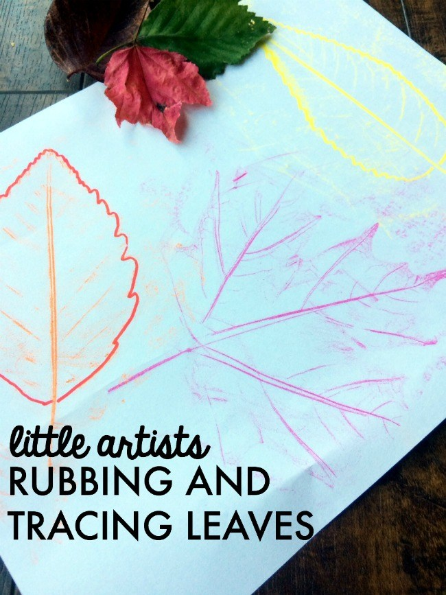 RUBBING AND TRACING LEAVES