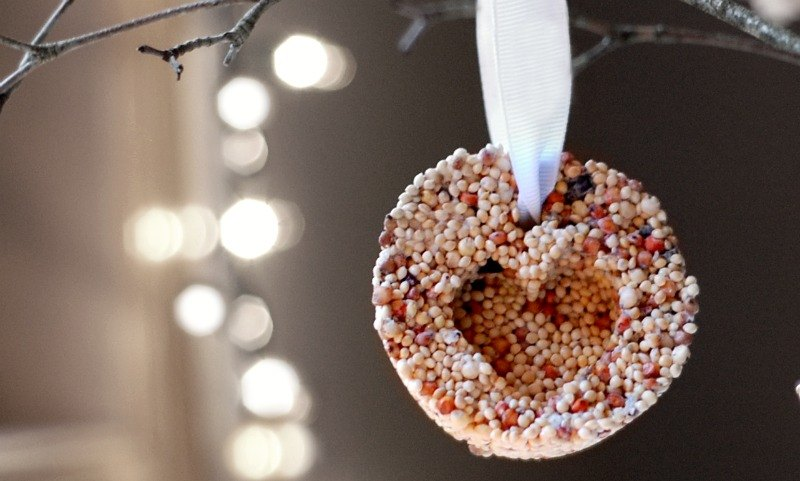 bird seed ornament