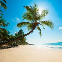Caribbean Travel Reviews