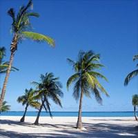 Florida Travel Reviews