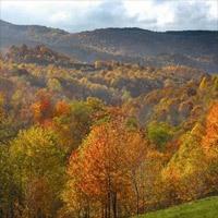 Virginia Travel Reviews