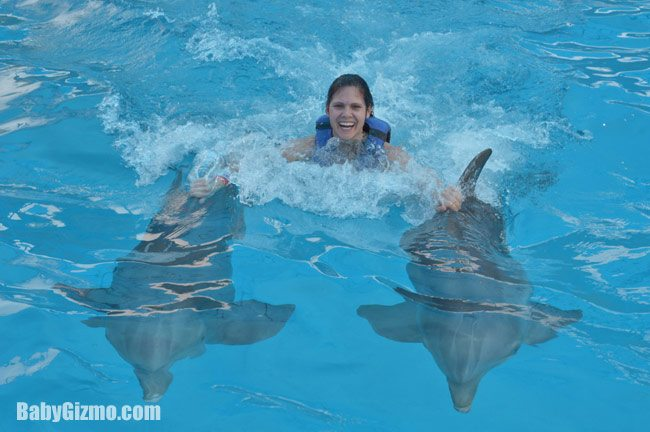 Puerto Vallarta: Dolphin Discovery
