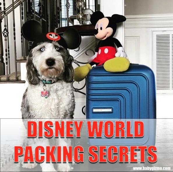 Disney Packing Secrets