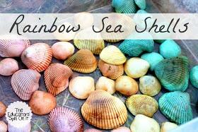 rainbow seashells
