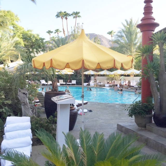 parker palm springs pool
