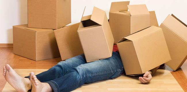 moving with a toddler tips