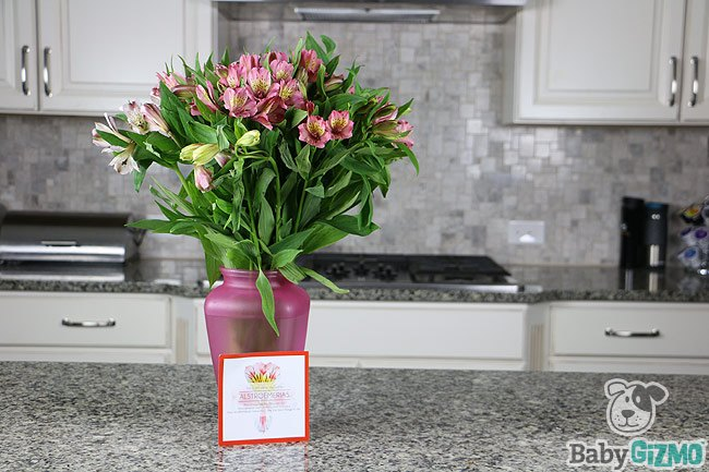 Make Her Day, Month After Month with Bloomsybox (VIDEO)