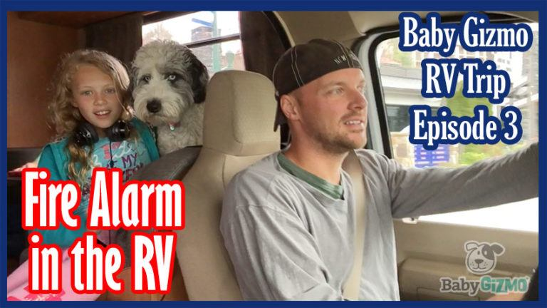 Baby Gizmo RV Travel Episode 3 | Fire Alarm in the RV