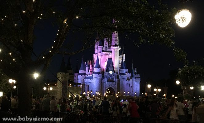 Walt Disney World with Kids Day Two