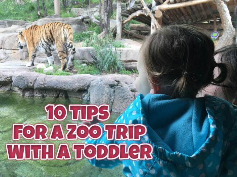 10 Tips for a Zoo Trip with a Toddler