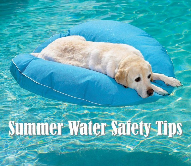Summer Water Safety Tips for Families