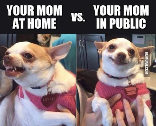 mom-at-home-vs-mom-in-public