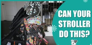 Can Your Stroller Do This? 3D Tote Challenge