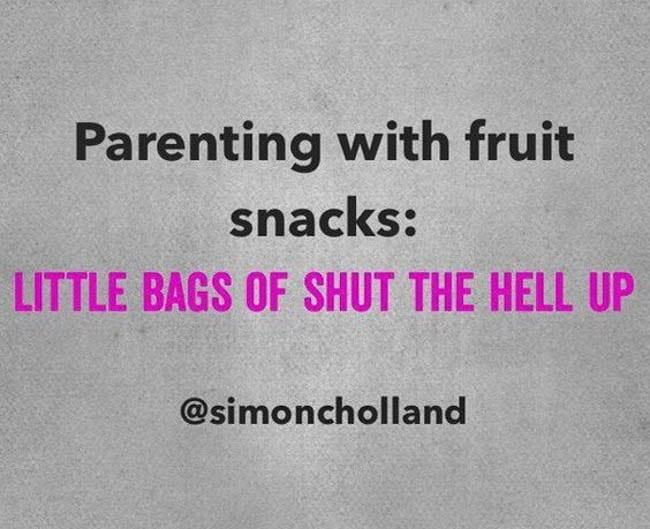 5 things in mom bag fruit snacks