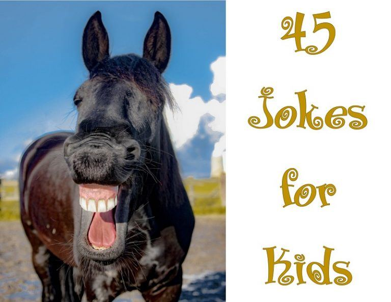 45 Jokes for Kids