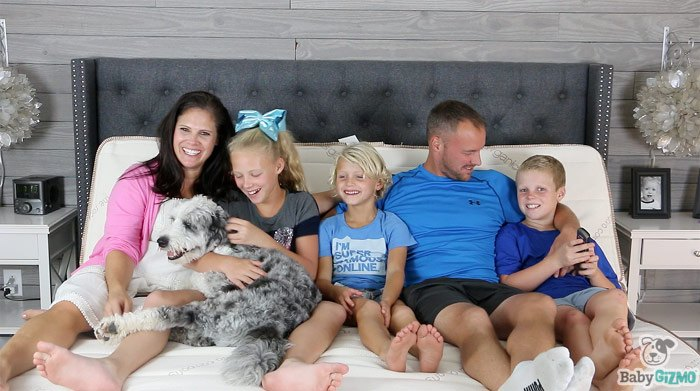 Baby Gizmo Family