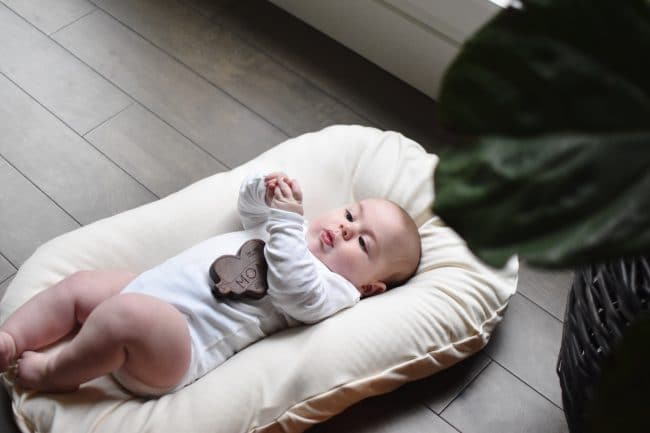 Review: Snuggle Me Baby Lounger