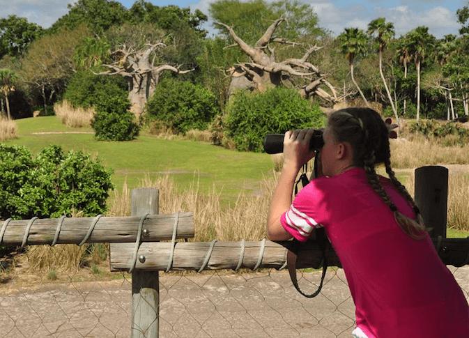 Wild Africa Trek Savanna