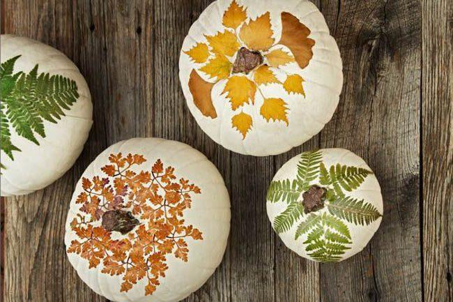 fall leaves pumpkin paint