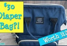 Land Diaper Bag Backpack Review