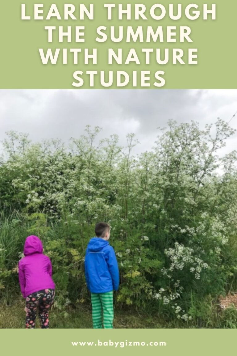 Learn Through the Summer With Nature Studies