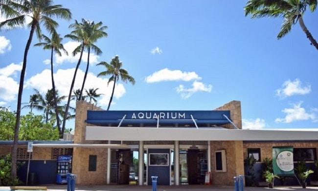 awaikiki aquarium