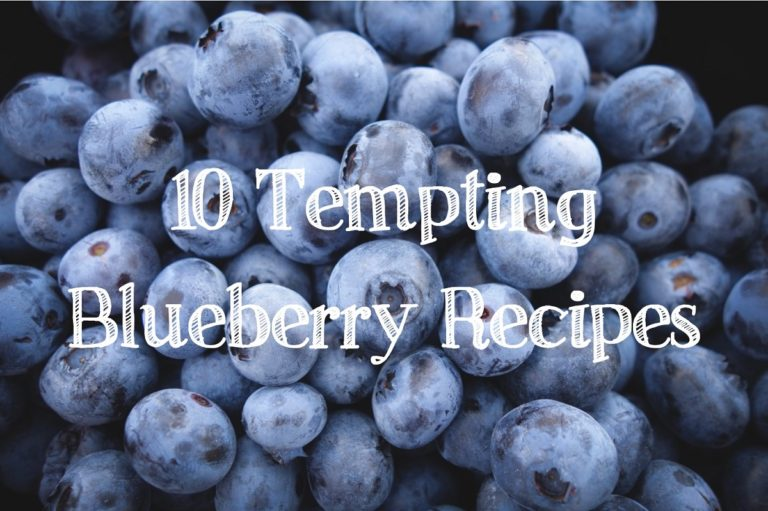 10 Tempting Blueberry Recipes