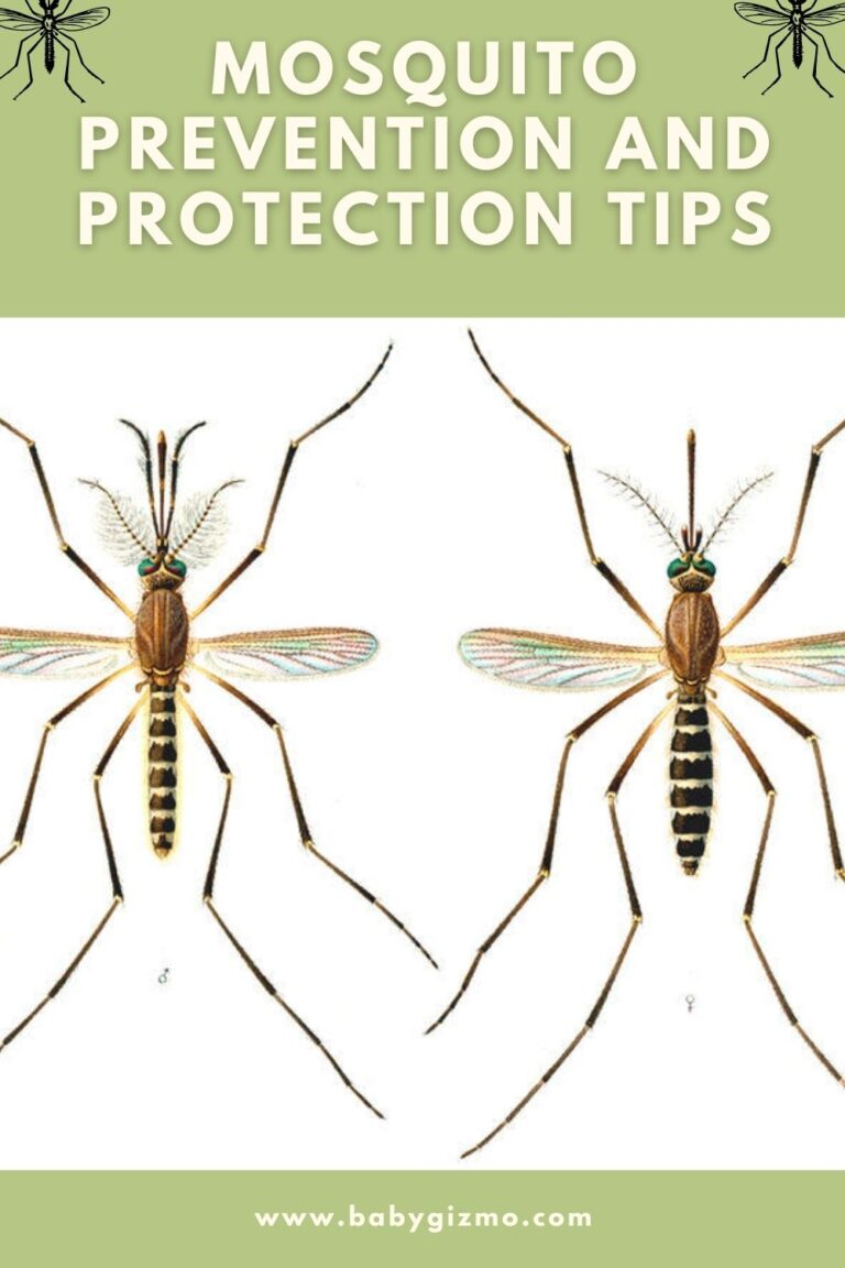 Mosquito Prevention and Protection Tips