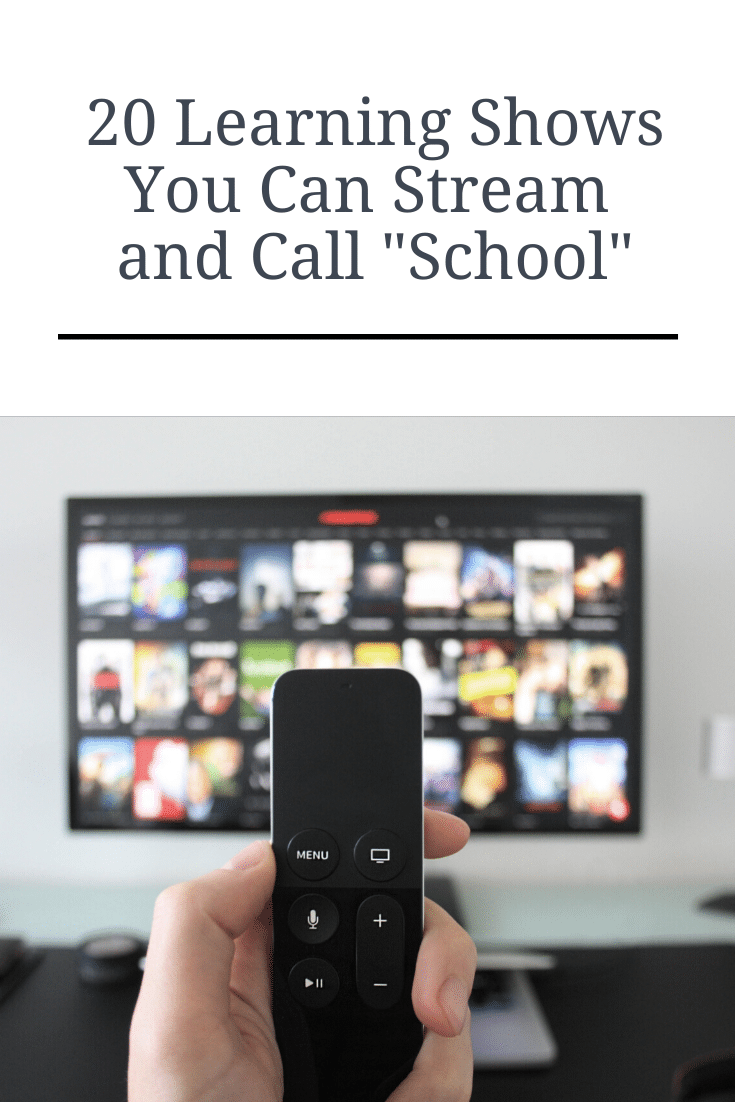 "20 Learning Shows You Can Stream and Call ""School"""