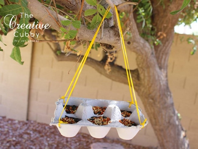 bird feeder with egg carton hanging from tree