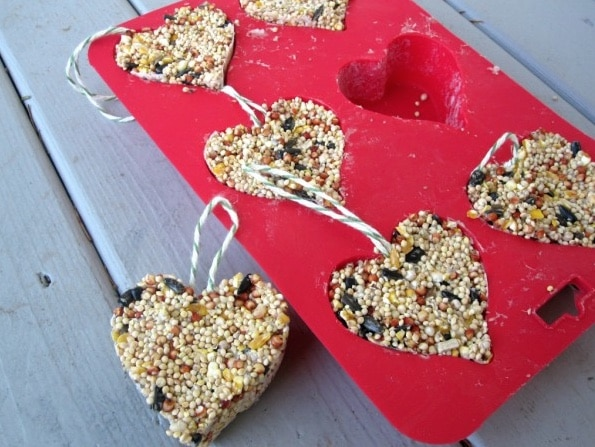bird seed heart hangers