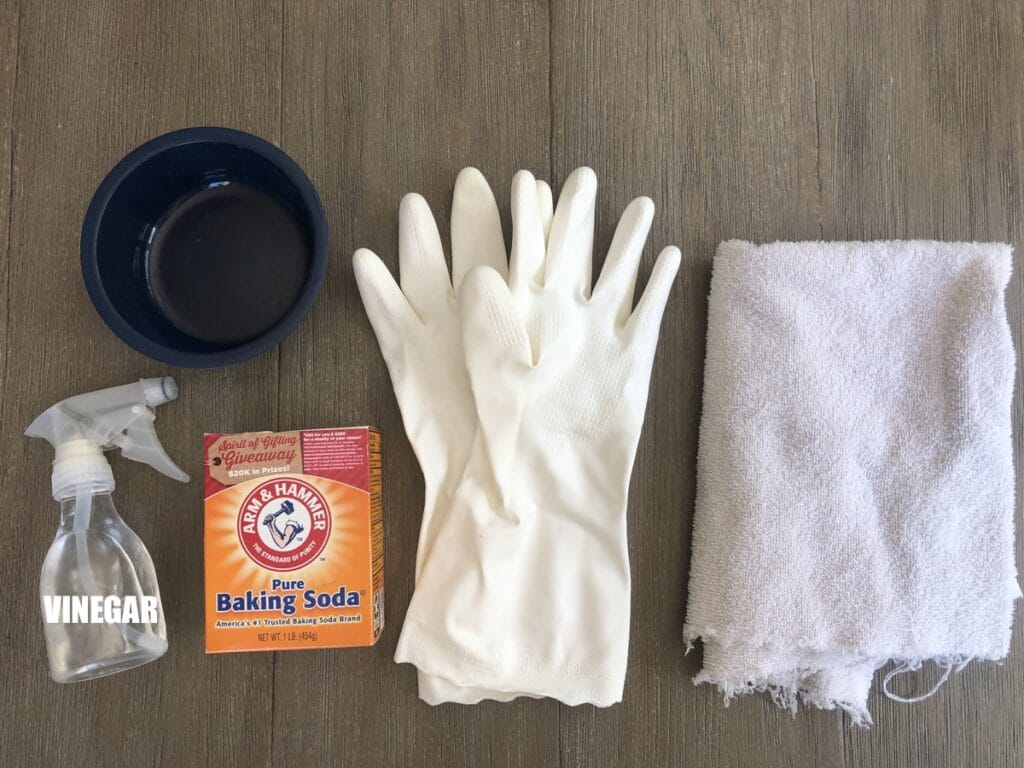 oven cleaning essentials