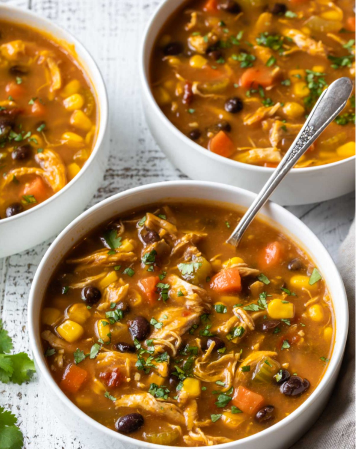 chipotle Chicken and Pumpkin Soup