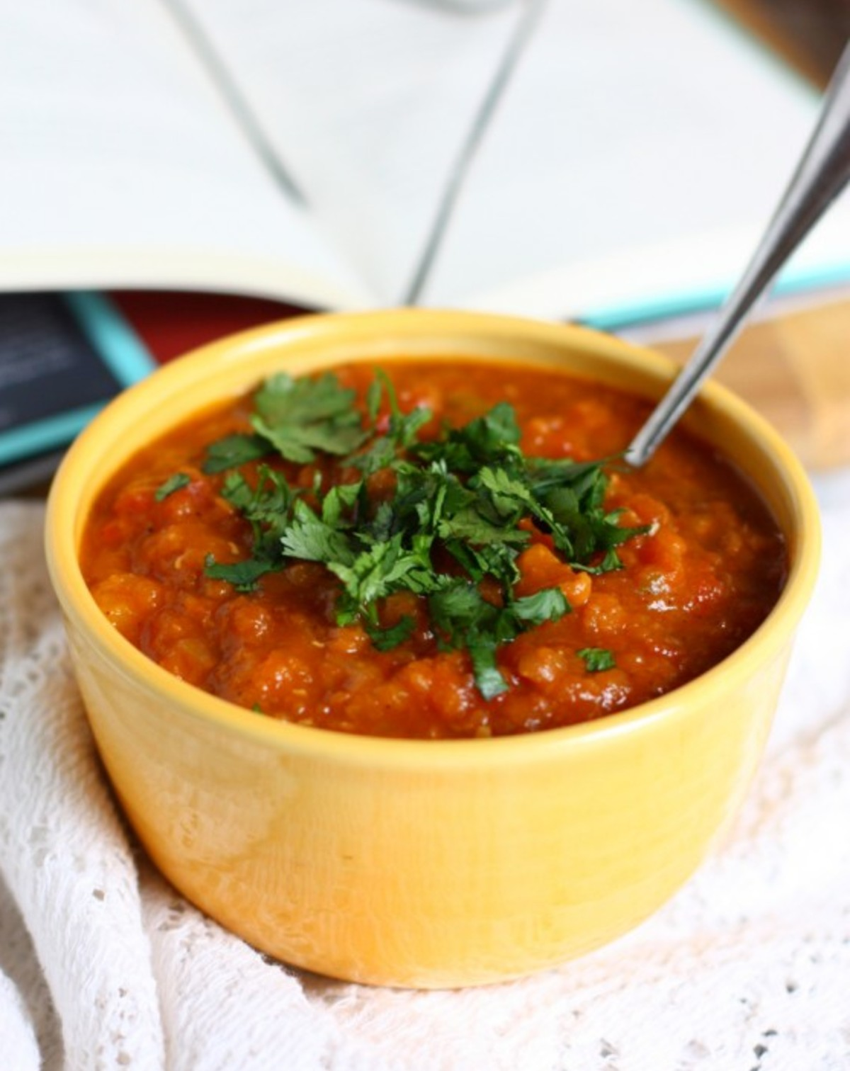 Chickpea, Butternut Squash, and Red Lentil Stew