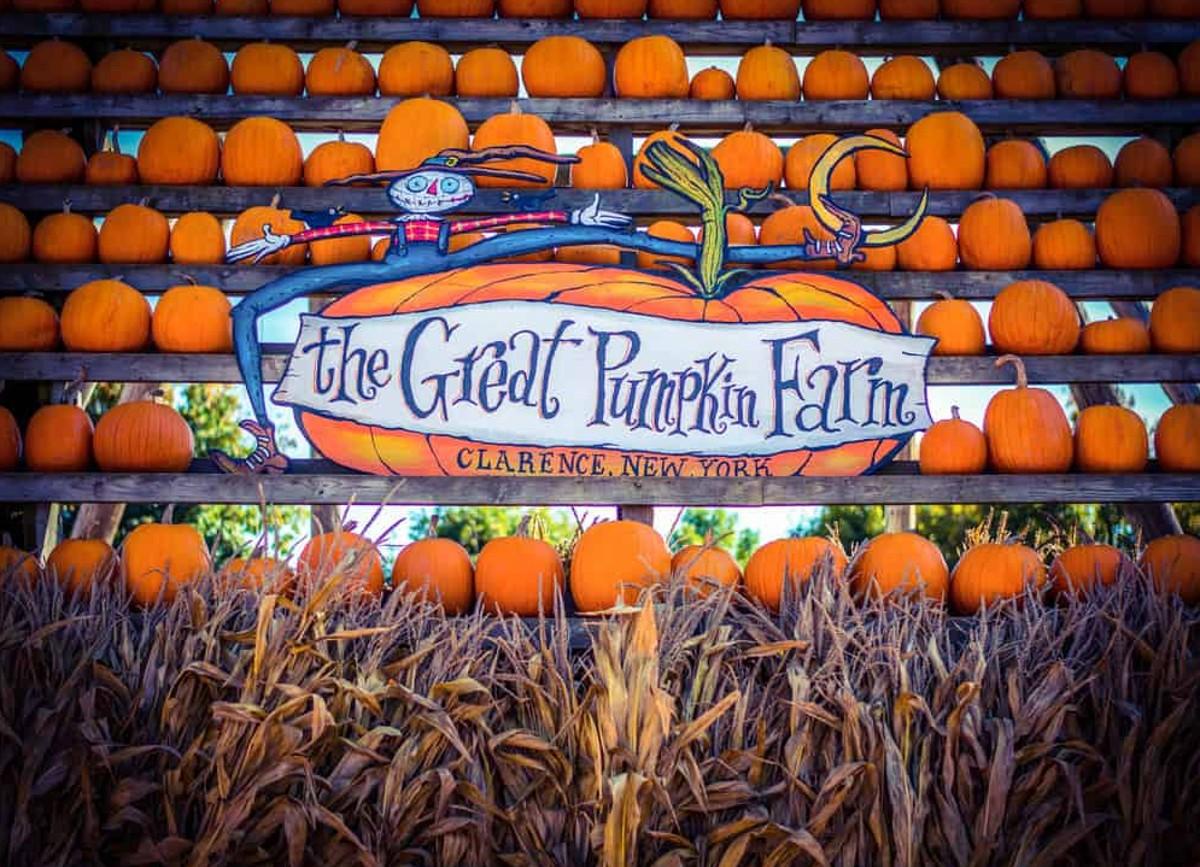 the great pumpkin farm in new york